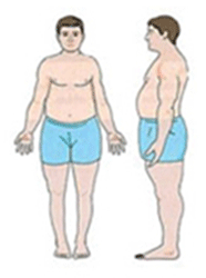 The Endomorph